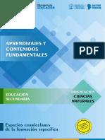 Aprendizajes-Cs-Naturales.pdf