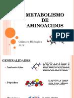 Teoría Aminoácidos 2018.pdf