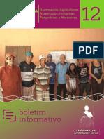 12 Boletim Xingu Web