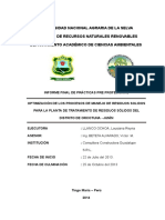 Informe Ppp Final_0