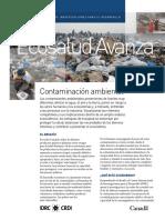 5.2.1 conaminación ambiental.PDF