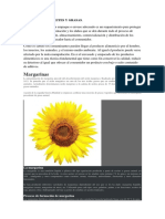 291603843-Envases-Para-Aceites-y-Grasas.docx