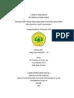 penetapan kadar losion dengan metode HPLC