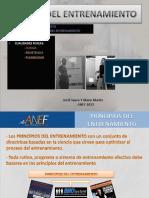 Teoria_del_Entrenamiento._Modf. formula de inbar.pdf