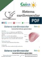 5. Histología- Power Point Sistema Cardiovascular GUIAR 2018 ALUMNOS