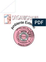 organigrama natural refor
