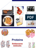 Ch5 Proteins