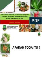 2. KONSEP DASAR TOGA  & Pembinaan TOGA.pptx