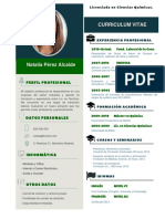 Elaborar Curriculum Vitae Empresarial Privado 532 PDF