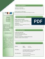 Plantilla Curriculum Empresarial 669 PDF