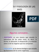 Anatomía y Fisiología de Las Aves