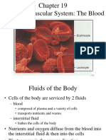 ch19 The Cardiovascular System The Blood.ppt