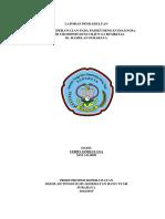 359180850-244063145-LP-Urosepsis-Docx.docx