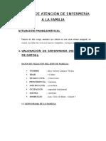 PROCESO DE ATENCION DE ENFERMERIA DE FAMILIA EN COMUNIDAD