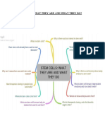 STEM CELLS (What They Are and What They Do)