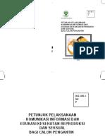Petunjuk Pelaksanaan KIE Kespro Catin.pdf