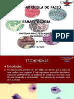 Trichomonas (Aula 2)