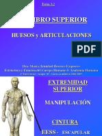 Miembro Superior Huesos y Articulaciones