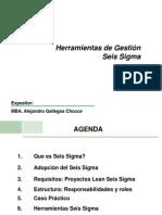 Herr Gest - Seis Sigma - Gallegos