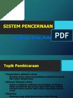 Sistem Pencernaan