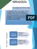 EDUCACION SUPERIOR diapositivas.pptx