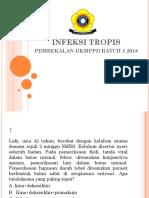 INFEKSI TROPI.pptx