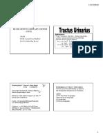gus_157_slide_tractus_urinarius.pdf