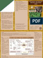 Leaflet PNTD