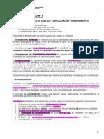 GUIA Nº 5- 2015- Consolidacion - Asentamientos