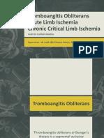 Pjt Cvcu Bed 4 Acute Limb Ischemic (2)