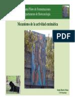 Mecanismos enzimaticos