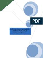 Analyse et Amélioration du Flux de livraison