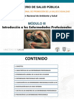 Introducción a Las Enfermedades Profesionales