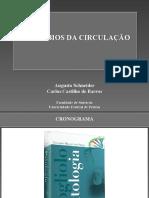 Patologia - Distúrbios-da-circulação.pdf