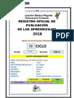 registroauxiliardeevaluacion2017