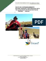Proyecto Fomento productivo para las artesanas de Salinas