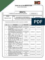 MINUTA CSH - JUNIO 2013.docx
