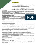 1530103911205_introducción Al Derecho Resumen Nº1 Suarez Com b4 (Autoguardado)
