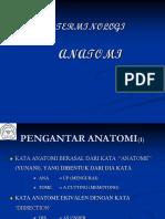 02b Terminologi Anatomi (2)