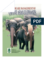 buku captive elephant.pdf