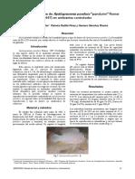 VETERINARIA-Montaje y Decoracion Del Acuario - Manual 2
