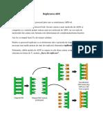 Cursul 3 - Replicarea ADN(1).docx