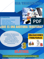 Auditoria Tributaria Expo