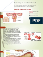 CANCER-DE-CUELLO-UTERINO.pptx