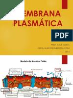 Bio 1EM Aula 15 e 16 - Membrana Plasmática