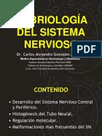 Embriologia Del Sistema Nervioso Dr Carlos Alejandro Gonzales Medina UNMSM