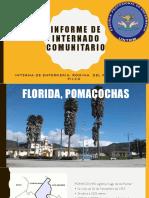 INFORME DE INTERNADO COMUNITARIO-POMACOCHAS, AMAZONAS