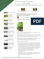 Recomendaciones Para Manejar El Pepino en Invernadero _ Hortalizas