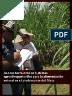 COLOMBIA - Bancos Forrajeros en Sistemas Agrosilvopastoriles