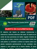 Injerto de hortalizas de fruto.